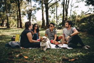 A group of four people, and a dog are sitting on the grass in a park.