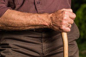 A hand holding a walking stick.